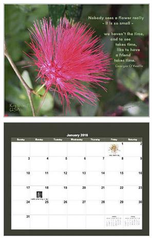 2016 calendar created by Page Morahan